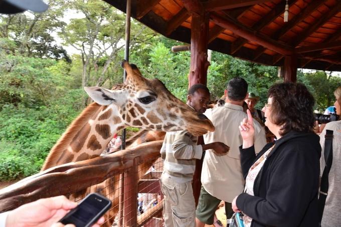 Linda Lectures Giraffe